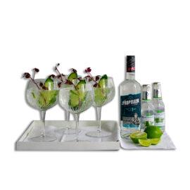 Årets gave med gin |