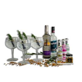 Årets gave med gin |||